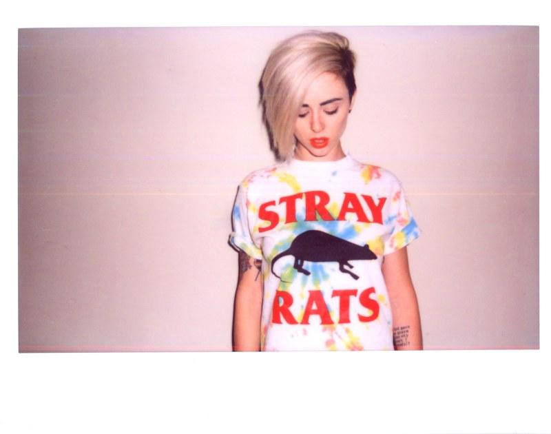 Nett Stray Rats